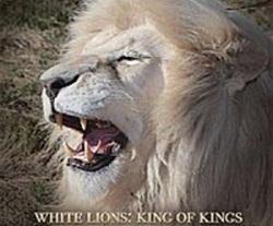 Белый лев - царь царей