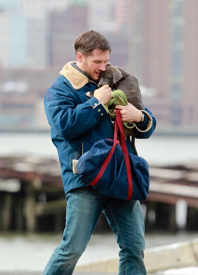 Тома Харди подружился со щенком