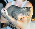 Через 3 месяца после торнадо кот нашел свою хозяйку