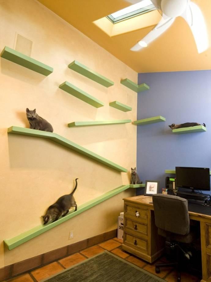 Кошачий уголок в интерьере фото
