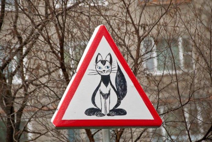 В одном из дворов Мурманска появился знак