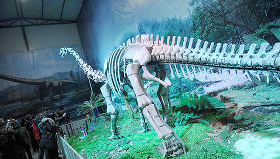 Новости новые виды динозавров
