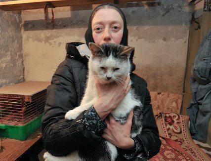 В Задонске монахиня открыла приют для бездомных кошек