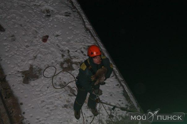 Промышленный альпинист в Пинске спас четырех котов от гибели
