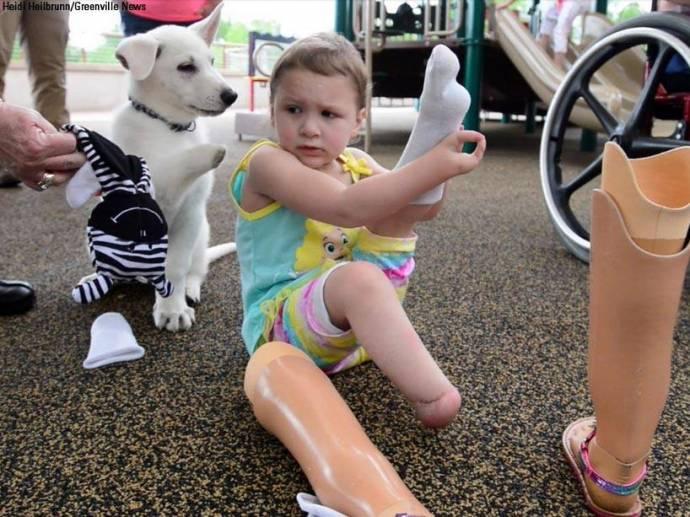 Девочка, родившаяся без ног, подружилась с трехлапым щенком