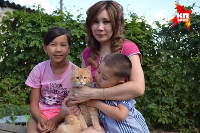 В Саратовской области кот Рыжик отпугнул от дома хозяев гадюку