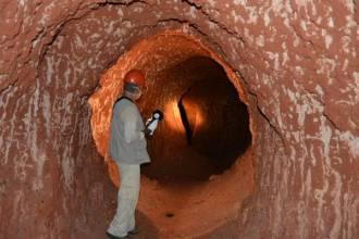 Гигантские древние ленивцы рыли огромные подземные туннели