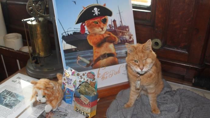 В Канаде устроили вечеринку для уходящего на пенсию музейного кота