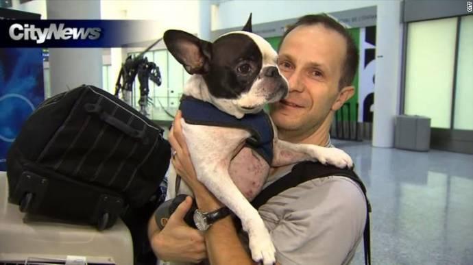 Канадский пилот экстренно посадил самолет, чтобы не заморозить собаку