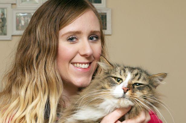 В Великобритании пропавший кот год кормился в гипермаркете