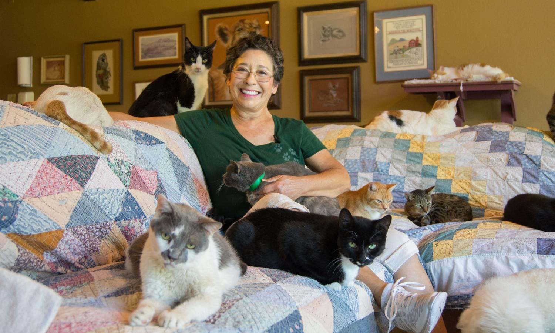 Картинки по запросу Пара из Канады сыграла необычную свадьбу в приюте для кошек