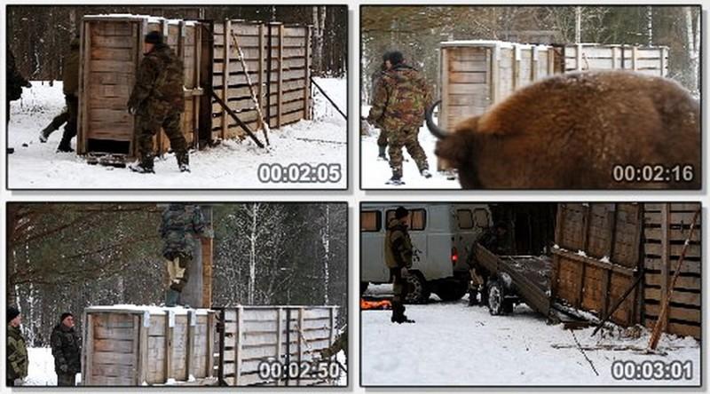 Праздники конец марта в россии